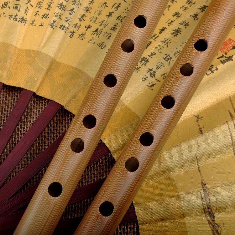 Beginner Level Travel Size Bamboo Flute Dizi Instrument One Section