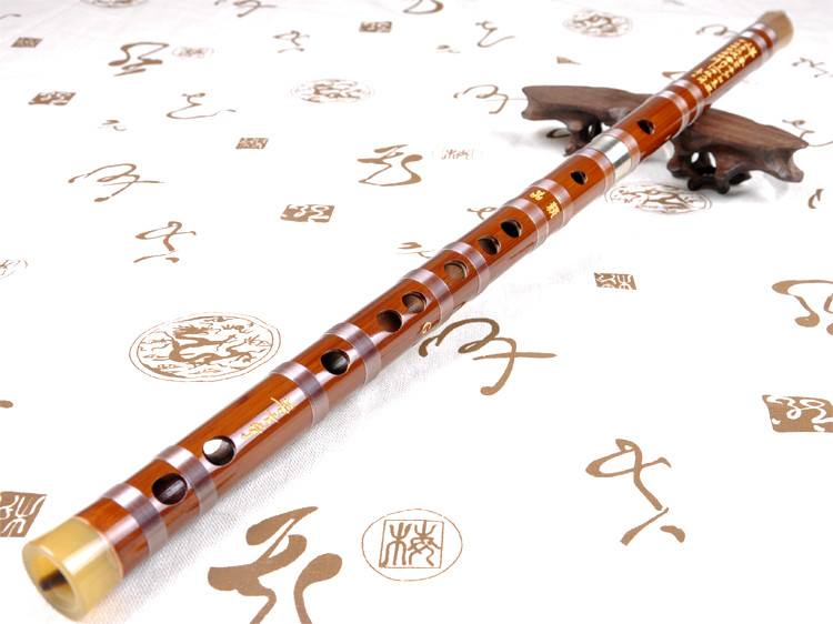 Concert Grade Chinese Bitter Bamboo Flute Dizi Instrument with Accessories 2 Sections