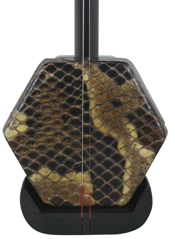 Professional Level African Sandalwood Erhu Instrument Chinese Violin Fiddle With Accessories