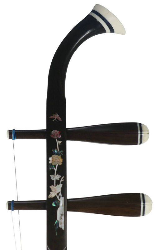 Professional Shell Carved Rosewood Erhu Instrument Chinese Violin With Accessories