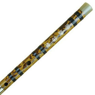Kaufen Acheter Achat Kopen Buy Professional Chinese Bitter Bamboo Flute Dizi Instrument with Accessories 2 Sections