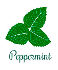 Certified organic peppermint oil.
