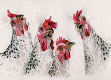 Chicken painting by Kay Johns