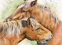 Suffolk Punch, painting by KayJohns