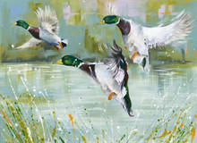 Duck artwork by Kay Johns