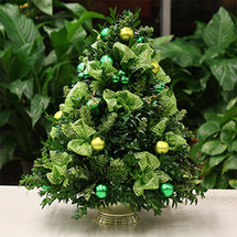 Christmas Shimmer Boxwood Tree