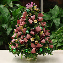 Christmas Cheer Boxwood Tree