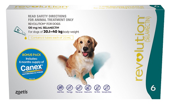 Revolution for Dogs Without Rx Prescription