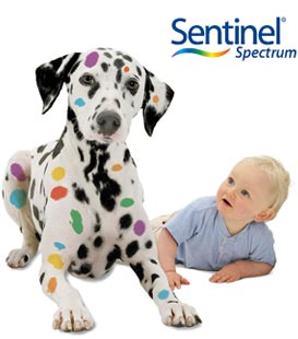 Sentinel Without Vet Rx Prescription