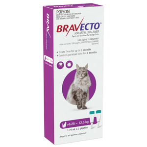 Bravecto for large cats flea & tick treatment
