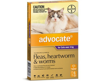 Advocate for Cats Over 4 kgs (over 10 lbs) - 12 Pack - Purple