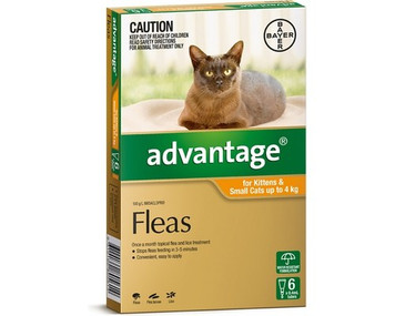 Advantage for Cats & Kittens up to 4 kgs (up to 10 lbs) - Orange - 6 Pack