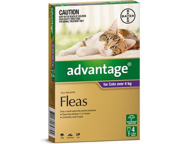 Advantage for Cats Over 4 kgs (over 10 lbs) - Purple - 4 Pack