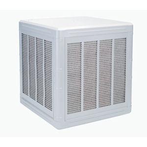 FD350A Evaporative Cooler 1/3 HP 115 Volt Down Discharge