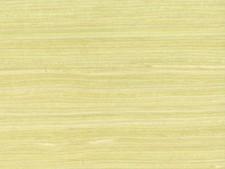 Maple - Qtr  Echo Wood Veneer- MP-168S
