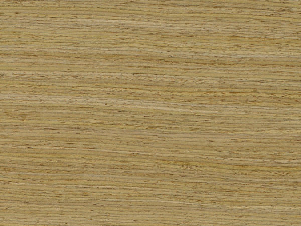 Reconstituted Oak Wood Veneer Rift White Oak 12 1s