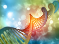 Genetic Nutritional Testing based on your 23andme test results will identify either 2000 or 9000 genes, depending on the year it was done. Prior to 2018, the number was 9000 and reduced to 2000 in 2018. Compared to the 200,000 tested, in the Genetic Nutritional test, it's much less but yields amazing results nonetheless. Our clients and patients have been able to understand unresolved health issues and are provided with a clear path forward to support healthy function with nutrition.  Your genes are your body's manual for how it is best treated.