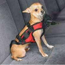 Deluxe Dog Car Harness (Continental US Orders Only)