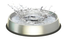 Dr. Catsby Stainless Steel Water Bowl