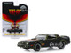 1977 Pontiac Firebird Trans Am Fire Am Black Hood Bird Very Special Equipment VSE Hobby Exclusive 1/64 Diecast Model Car Greenlight 30059