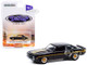 1969 Chevrolet Yenko Camaro Dave Tucker's Black Gold Stripes Detroit Speed Inc Series 2 1/64 Diecast Model Car Greenlight 39070 B