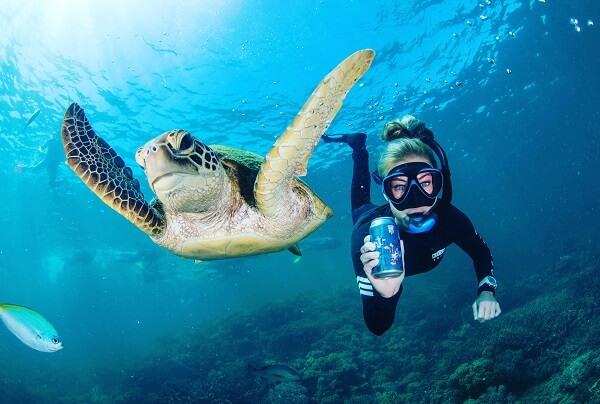 diver-v2.jpg