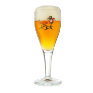 Brugse Zot Beer Glass