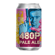 Pixel 480P Pale Ale 375ml Can