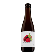 Garage Project Single Fruit Raspberry Sour