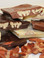 Bark - Pecan - Assorted Chocolate