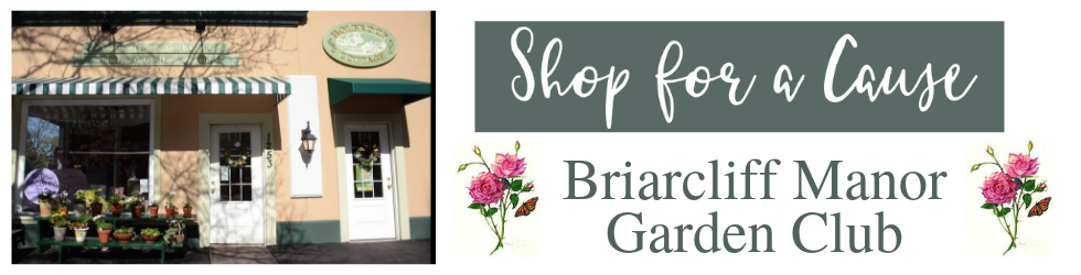 sfac-briarcliff-manor-web-banner.png