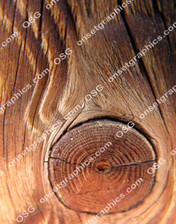 WOOD GRAIN KNOT