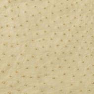 Ostrich Skin Leather - IVORY SF - BONE - 17.2222 sq ft - Grade 1