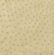 Ostrich Skin Leather - IVORY SF - BONE - 17.2222 sq ft - Grade 1