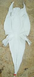 CAIMAN CROCODILE SKIN - WHITE - HORNBACK - 40cm