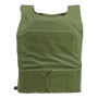 Spartan DL Concealment Plate Carrier -  od green front