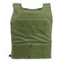 Spartan DL Concealment Plate Carrier -  od green front