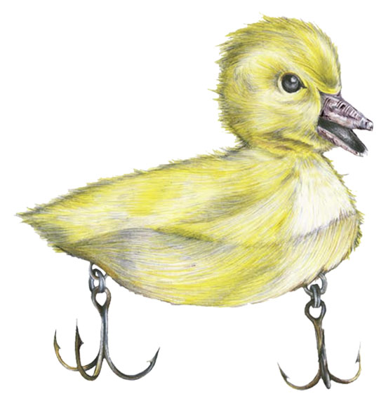 Duck Art -  Artwork By Our Designers | Solifornia