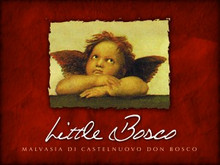 Little Bosco Malvasia di Castelnuovo Don Bosco