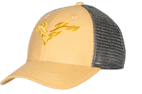 Legacy Lo-Pro Snapback Gold/Silver Logo Hat