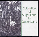 Cultivation of Sugar Cane in Queensland
