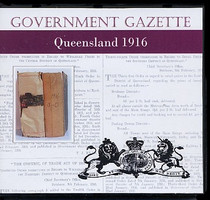 Queensland Government Gazette 1916