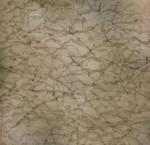 Karen Foster 12x12 Wrinkles