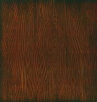 Karen Foster 12x12 Kids Ancestry Wood Pattern