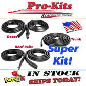 Basic Weatherstrip Kit 71 72 73 74 Charger Road Runner Satellite (Does not fit Charger SE)