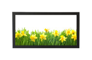 6x18 Panoramic Frame - Wide Satin Black