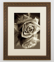 8x10 Antique Black with Gold Ivy Frame