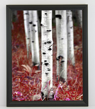 11x17 Thin Black Bevel Frame