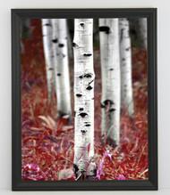 12x18 Thin Black Bevel Frame