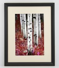 14x14 Thin Black Bevel Frame